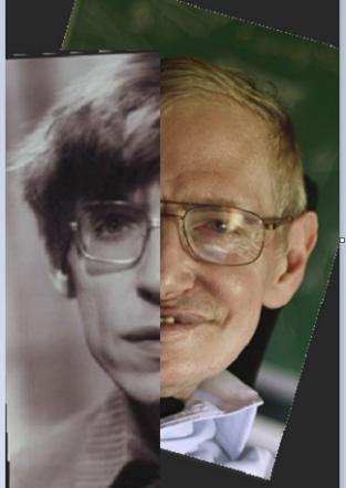 Hawking Hawking composite 2