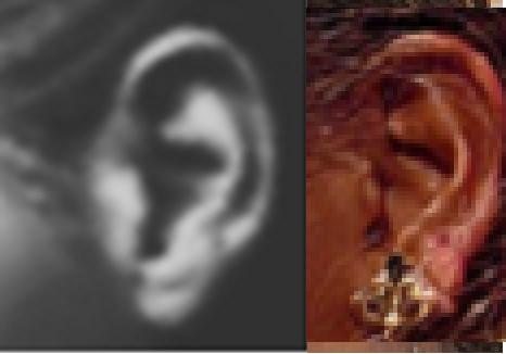 ear-comparison
