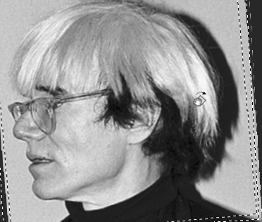 warhol-left-profile-2
