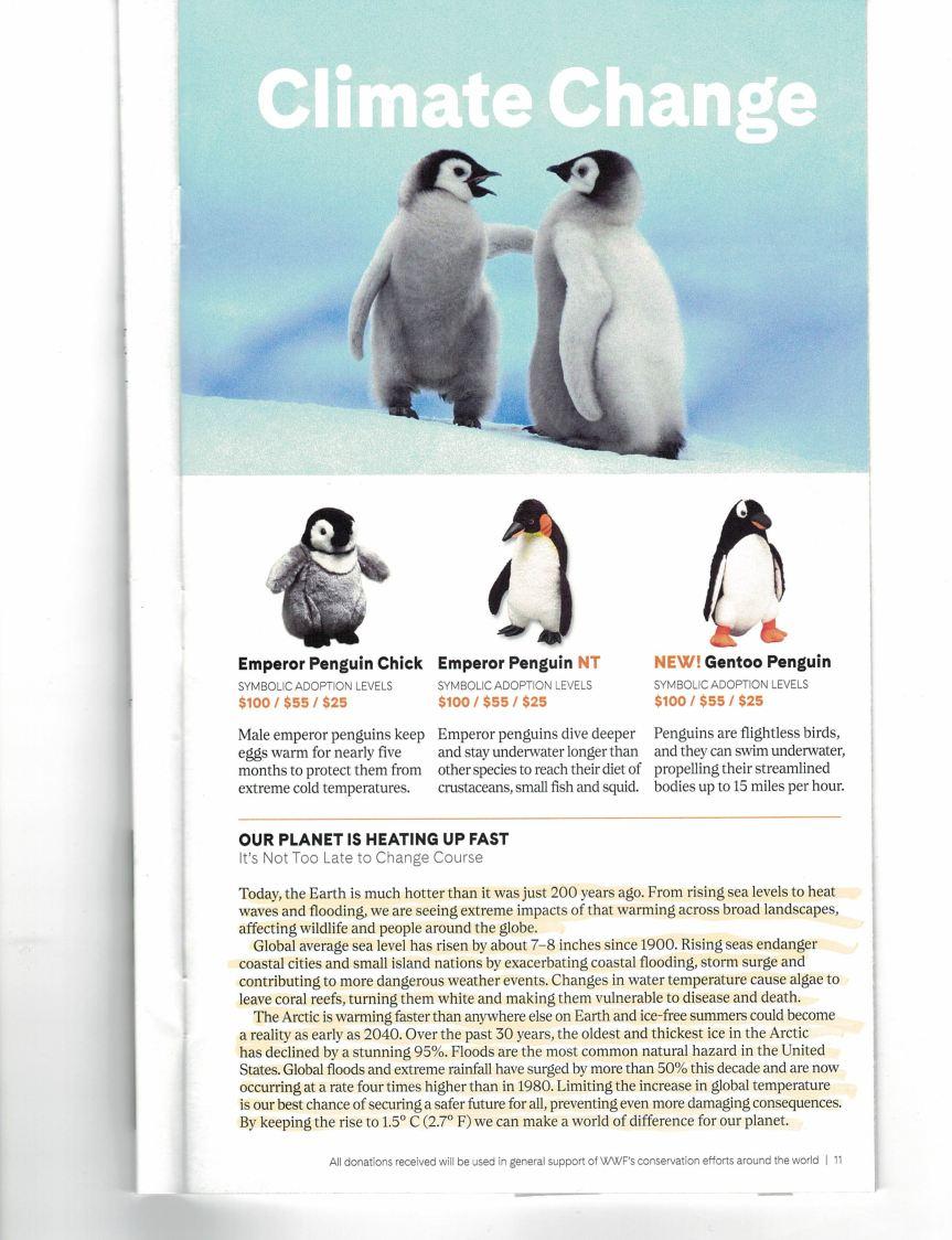 WWF Nonsense_000013